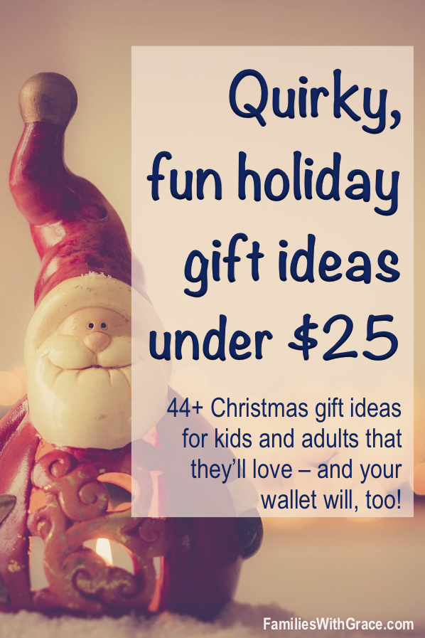 Quirky, fun holiday gift ideas under $25 for everyone on your list