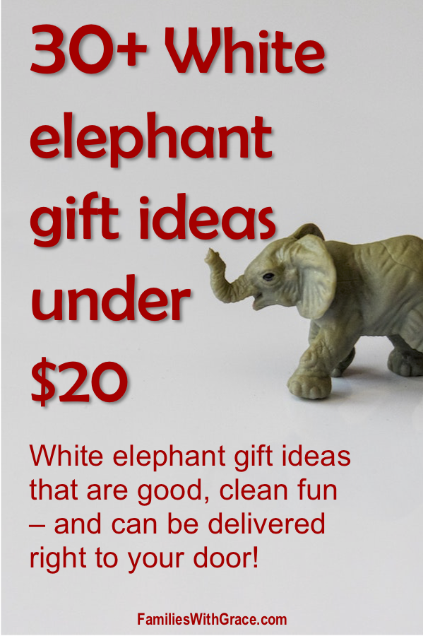 30+ White elephant gift ideas under $20