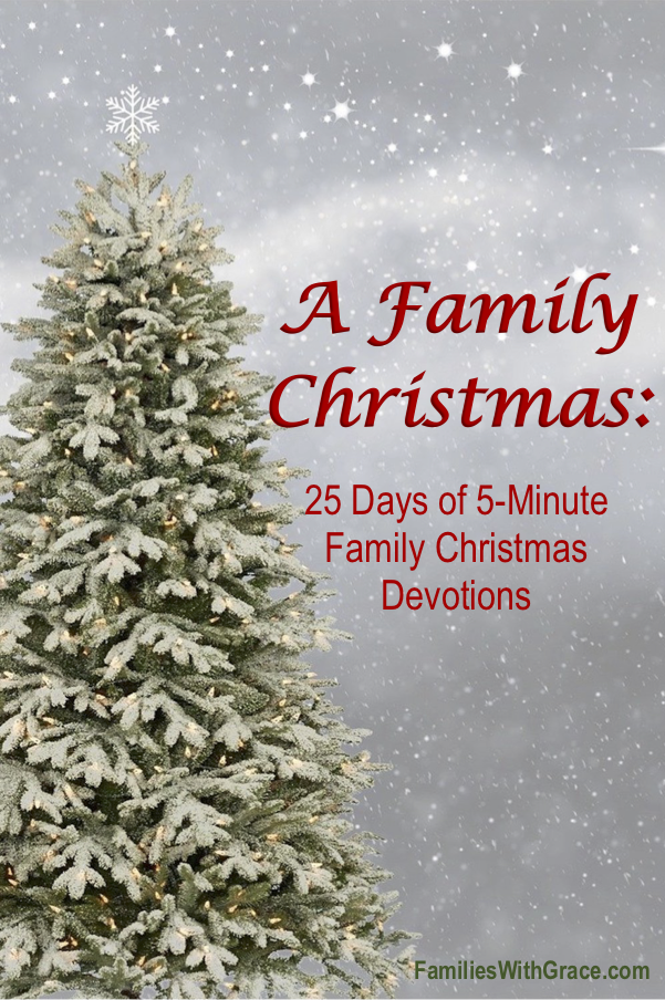 A family Christmas devotion book