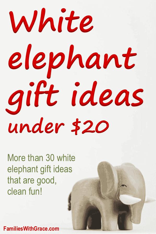 30+ White elephant gift ideas under $20